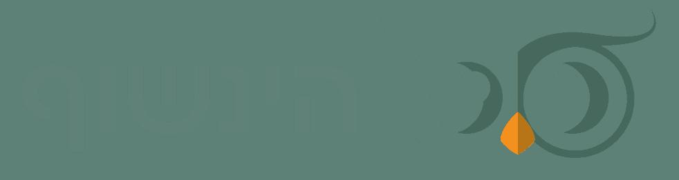 הינשוף - לוגו ירוק - רקע שקוף